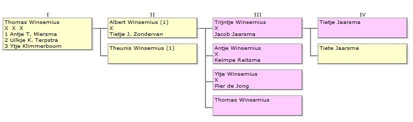 Schema-Winsemius