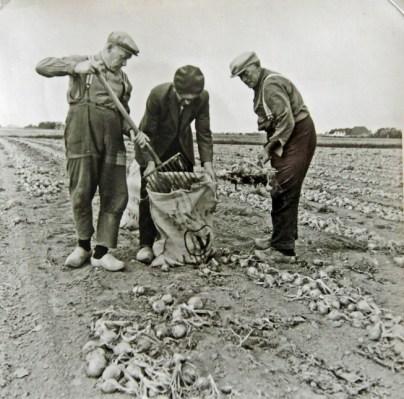 Vlnr: Johannes Mulder, Theo Binnema en Pieter de Groot