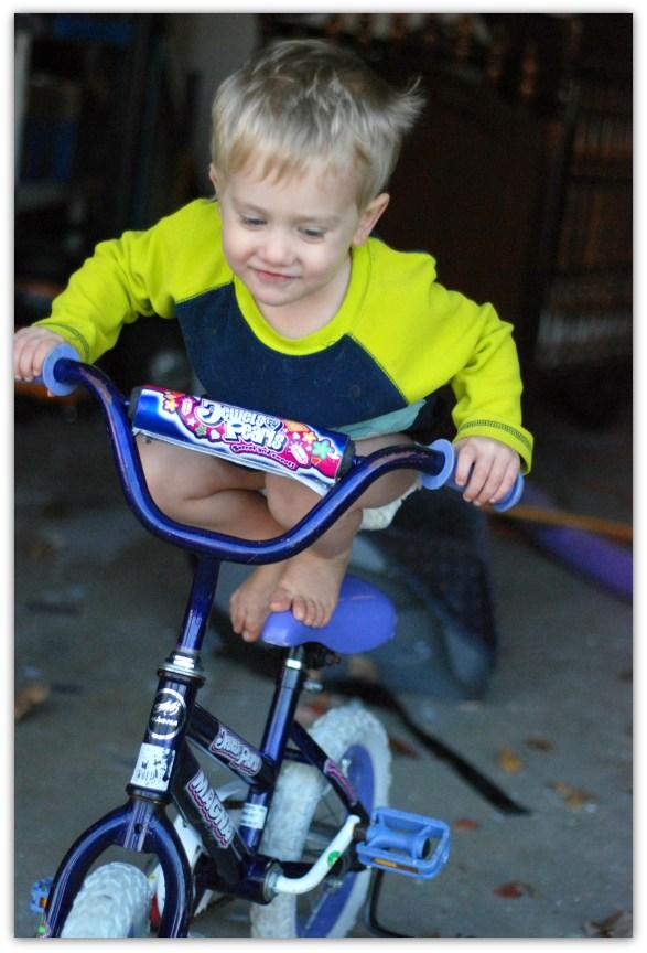 Nicky's Bike II