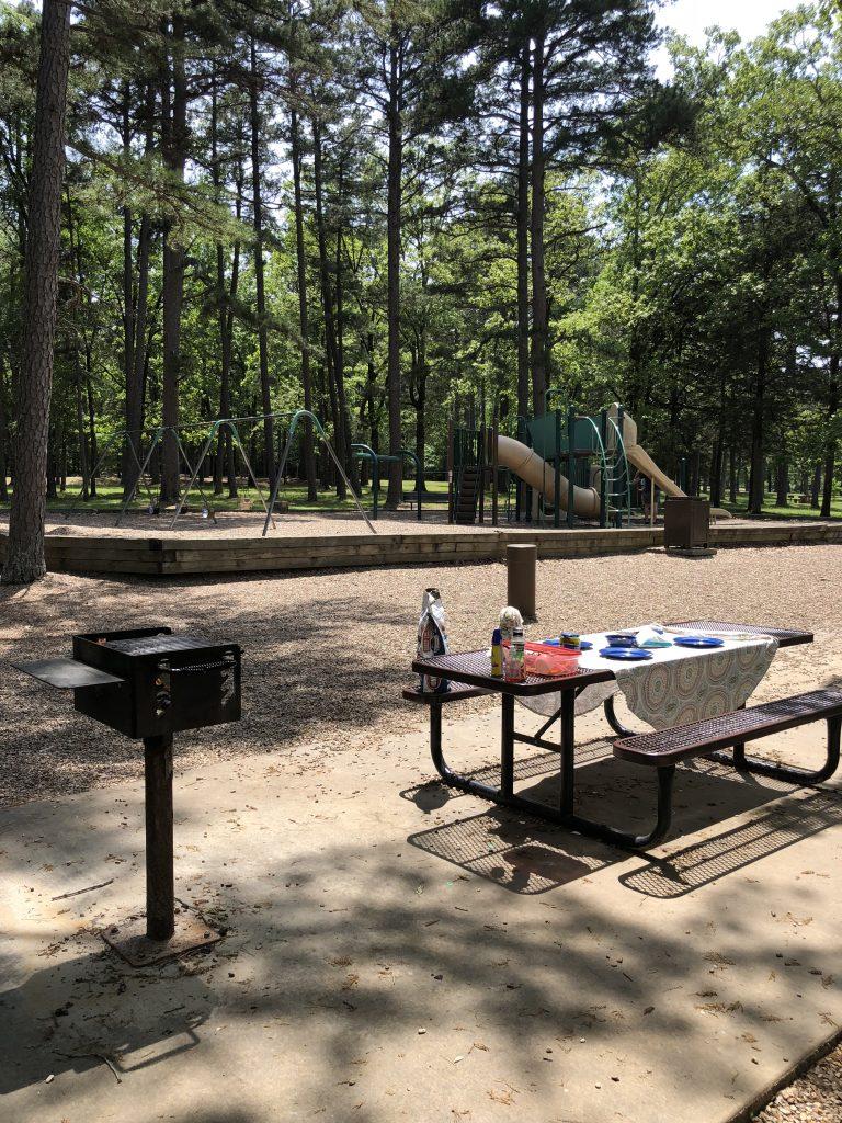 playground and picnic