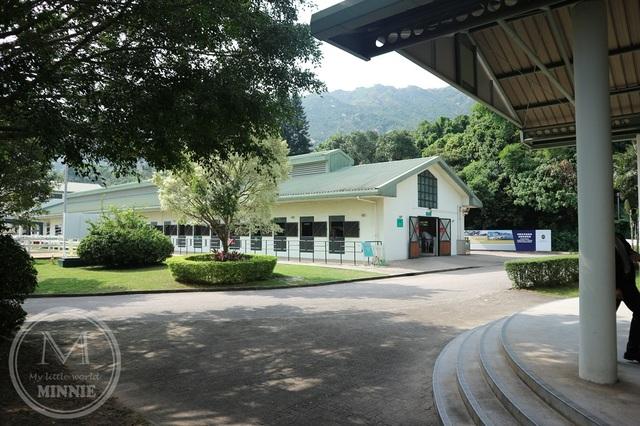 屯門騎術學校