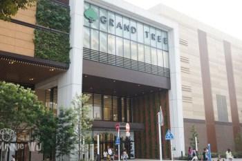 【東京親子購物】武藏小杉GRAND TREE購物中心~帶小孩逛街好輕鬆