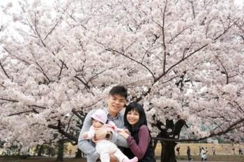 [東京賞櫻景點]櫻花百選~新宿御苑櫻花滿開超壯觀
