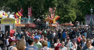 This year's House of Representatives State Fair Poll surveyed fairgoers' views on a number of subjects. One finding: 89.1% of respondents favored criminal background checks in connection with gun sales. (AP file photo: Jim Mone)