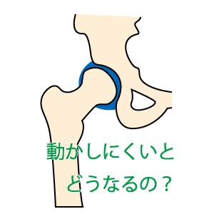 関節の動きpt2 股関節の動きが悪くなると・・・
