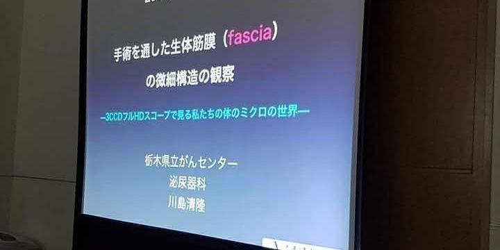 筋膜・Fascia pt3 勉強会に参加して