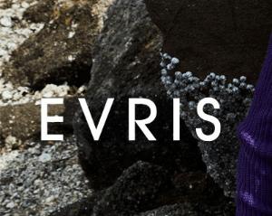 エヴリス(EVRIS)福袋2020のネタバレ情報!予約方法や中身口コミ情報も!