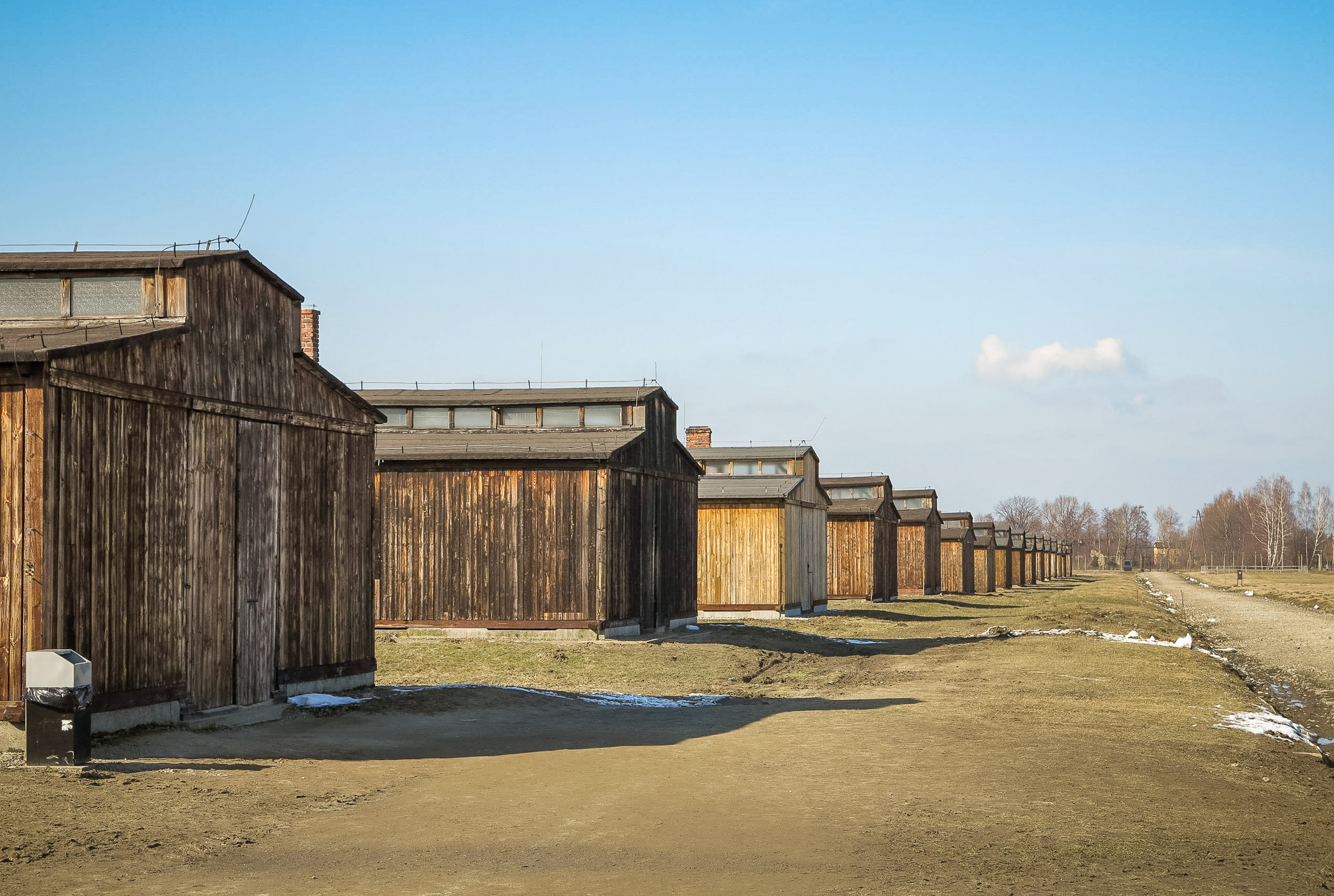 Essay: Concentration Camps
