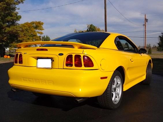 1998 Mustang Cobra