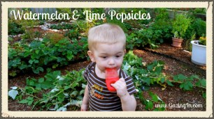 Watermelon & Lime Popsicles |Gazing In