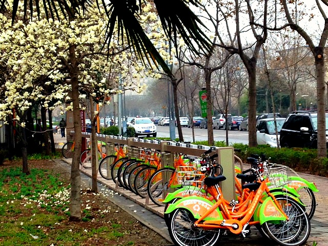 China: These 'bike stations' are all over Xi'an. It's no more than 30 RMB to hire one for 24 hours! #itsabikecity #spring #livinginChina