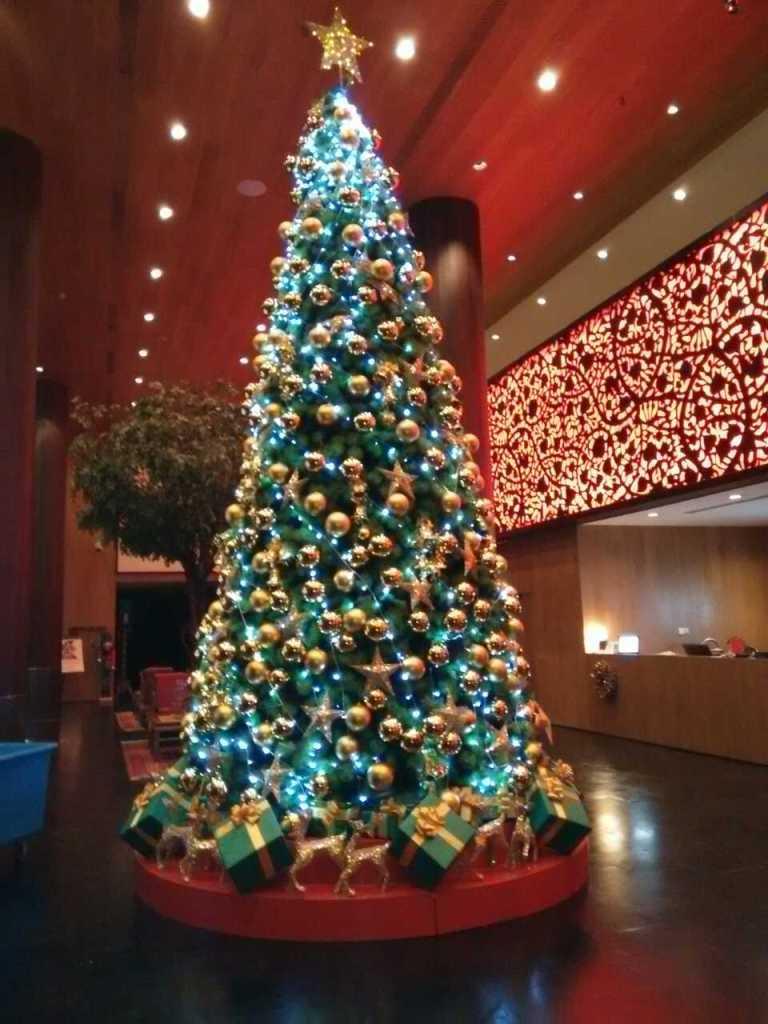 Xian Christmas Westin