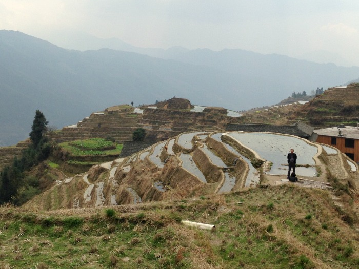 Guilin Rice Terraces 1