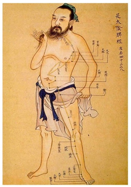 Acupuncture in the Ming Dynasty
