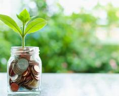 plant-growing-from-coins-glass-jar-blurred-green-natural-background