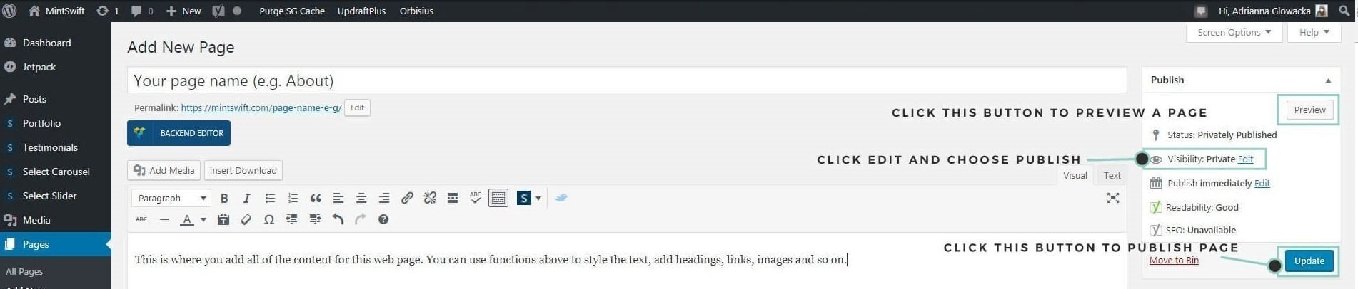 How to preview and publish page in WordPress - MintSwift