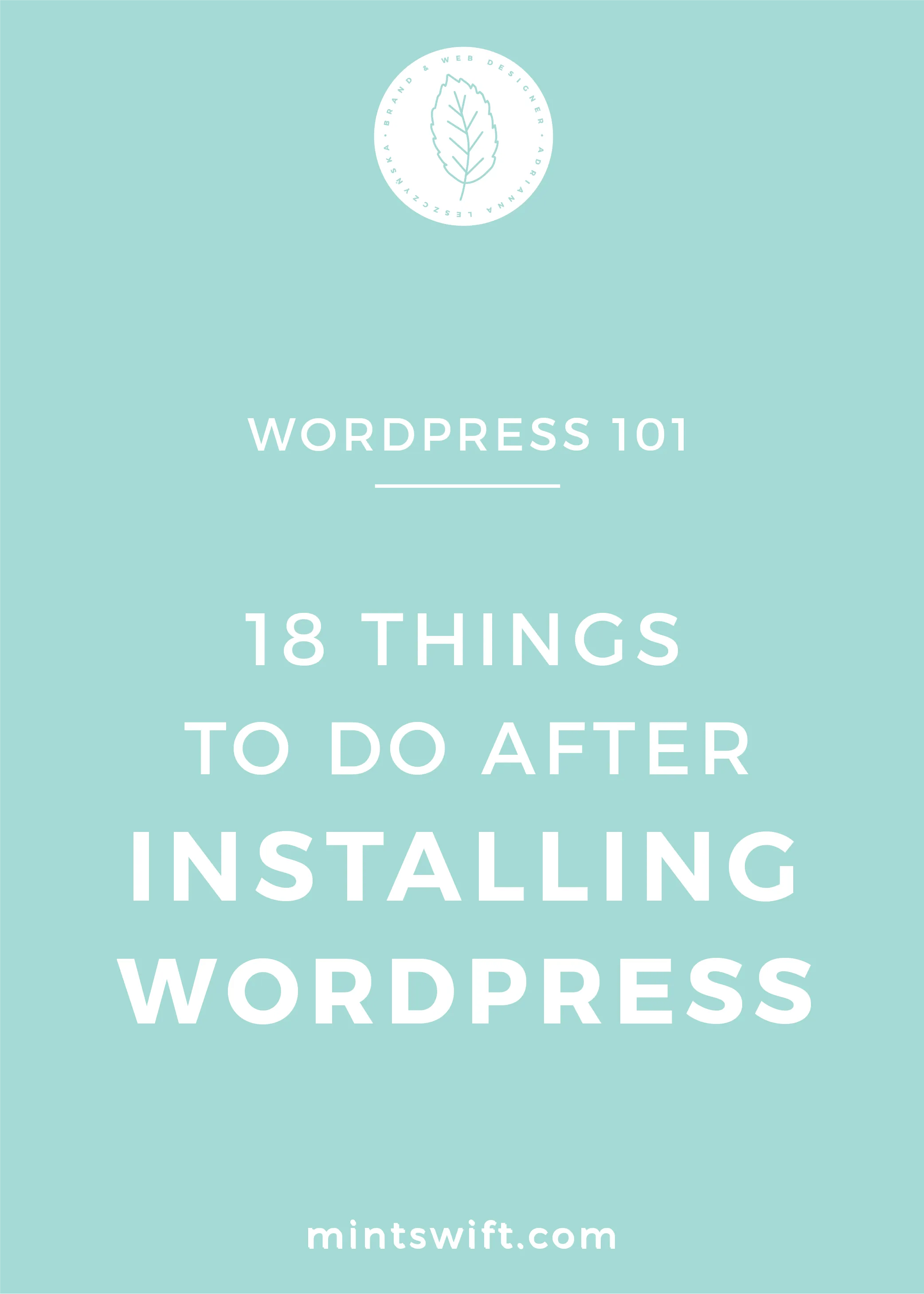 18 Things to Do After Installing WordPress - MintSwift