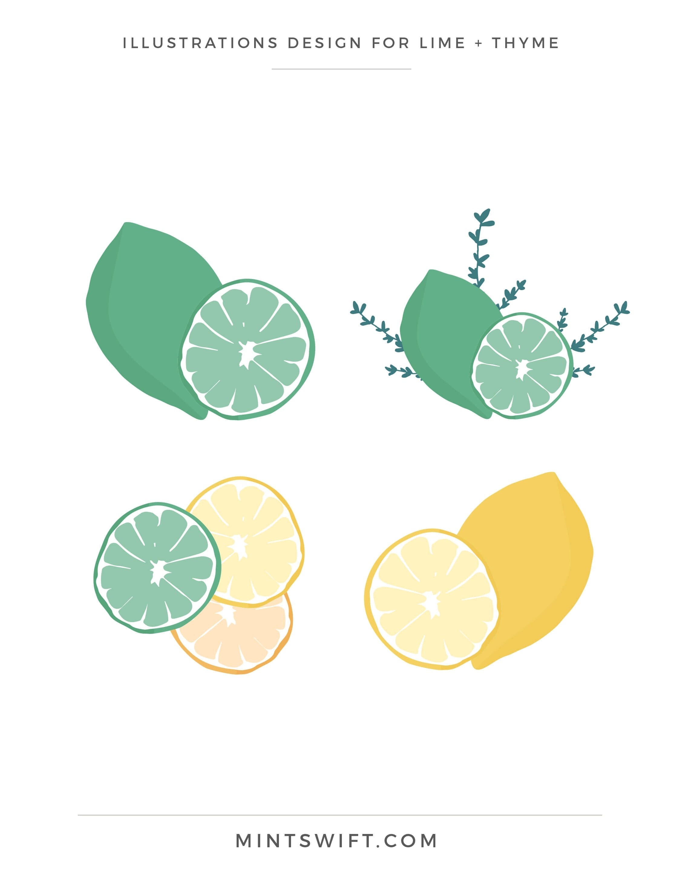 Lime + Thyme - Illustrations Design - Brand & Website Design - MintSwift