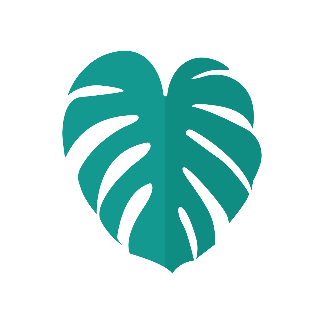 Vector illustration of a Monstera Deliciosa (Swiss cheese plant) leaf in flat design style