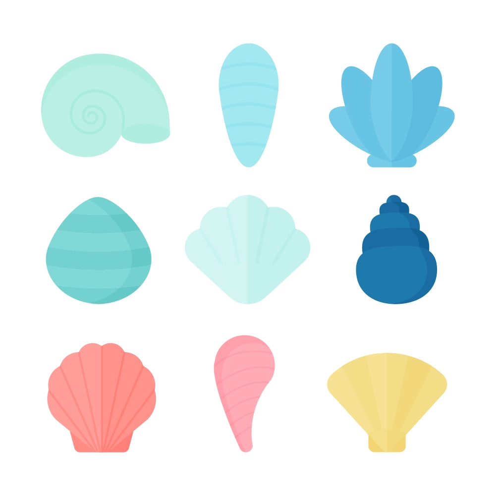 Flat illustration of a Various Seashells in Summer Colours