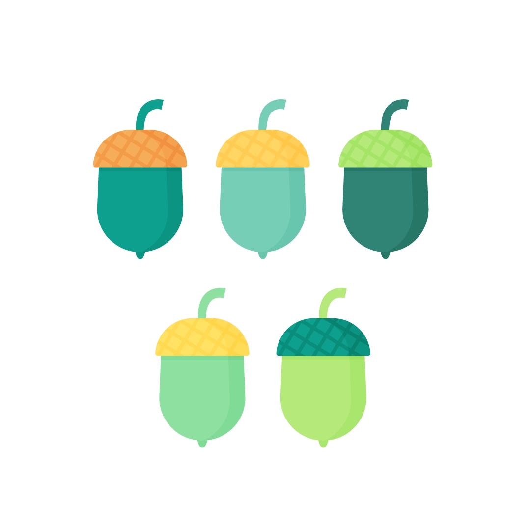 Vector illustration of different acorns in flat design style