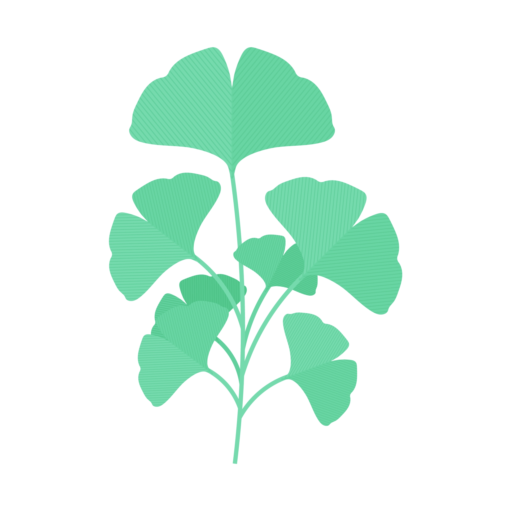 Vector illustration of a Ginkgo Biloba branch in flat design style