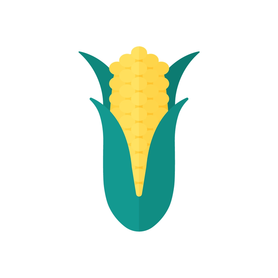 Vector illustration of a corn in flat design style
