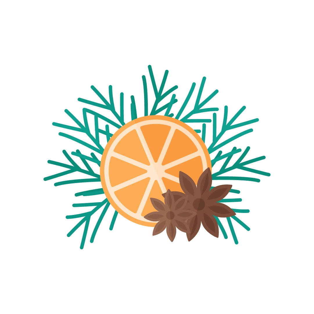 Vector illustration of a slice of orange with star anise & fir branches in flat design style