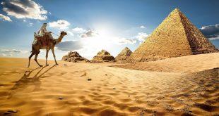 Egiptus scaled