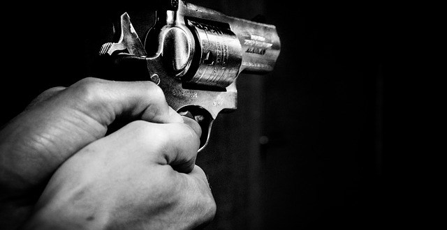 gun g0256fbd31 640