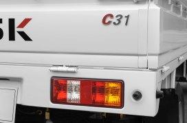 DFSK C31