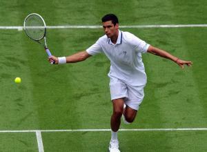 Victor Hanescu Wimbledon 2013