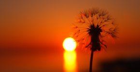 Sunset-Summer-Desktop-wallpaper