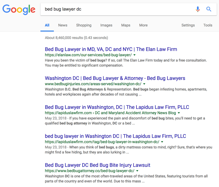bed bug lawyer seo