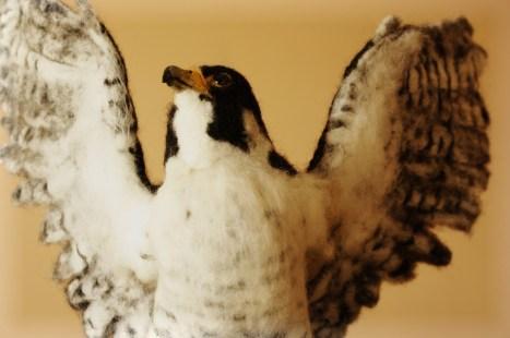 peregrine falcon needle felting bird