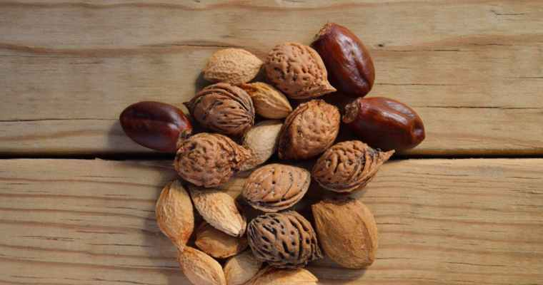 5 Types of Nuts and Why They Are Good for You