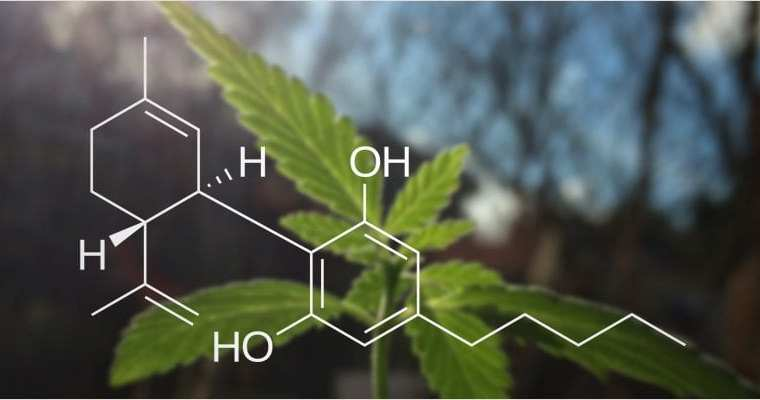 How You Can Use CBD to Boost Your Athletic Performance