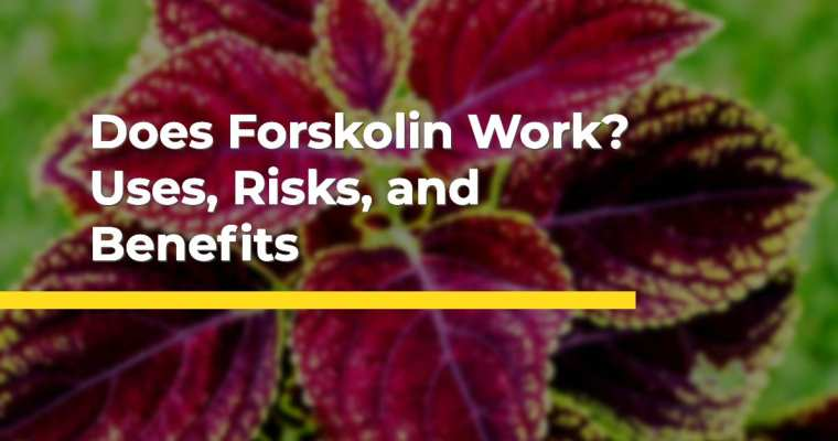 All Natural Forskolin – Pure Fat Fighting Power!