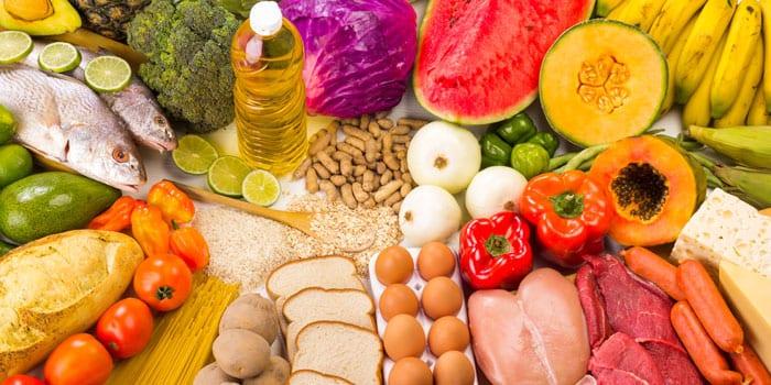 Why children need a diverse diet