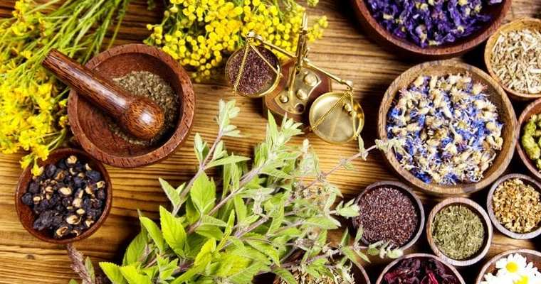 Is naturopathy the future of medicine?