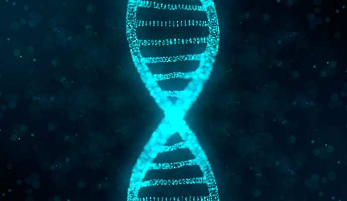 All you need to know about analyzing gene expression with RNA Seq analysis
