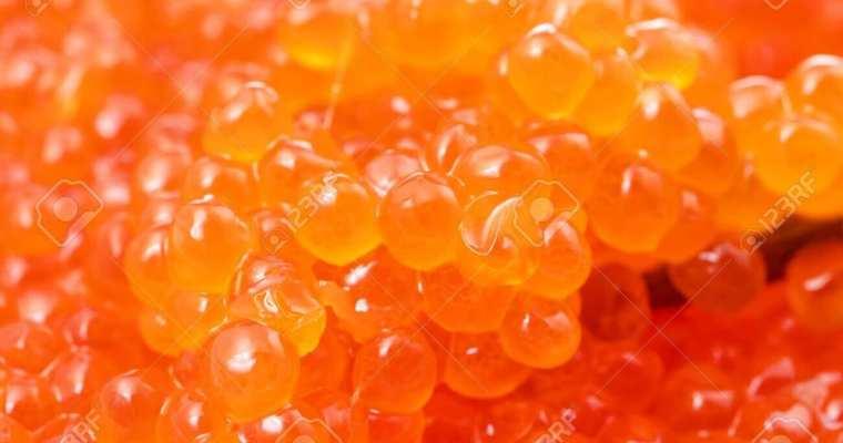 Best Pink salmon caviar