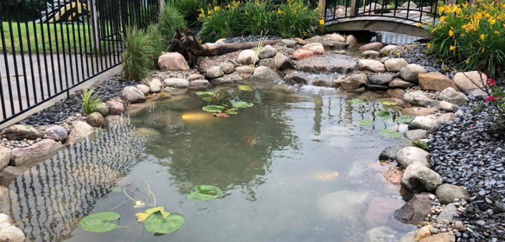 Backyard Koi Pond Design Platinum Ponds Landscaping