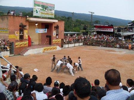 "Estos osados e improvisados toreros ""agarraron"" al toro."