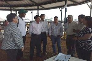 Una delegación de colombianos participó en una feria en Ecuador, logrando importantes acuerdos para la ganadería fronteriza. Foto: Manuel Ortiz / Fedegán.