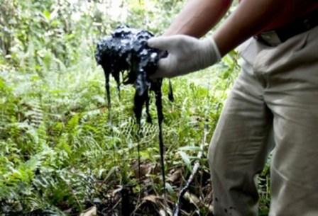 La limpieza de crudo en la región ha venido haciéndose, pero el daño ambiental tardará años en ser reparado.