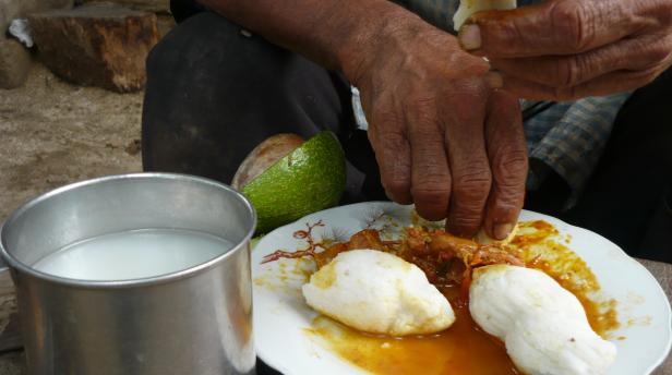 Alimento Kankuy//Foto: ONIC