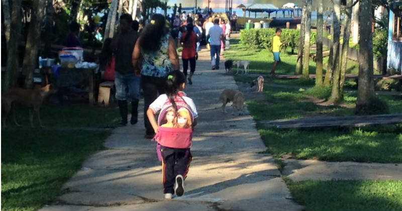 ¿A qué deberían ir los niños a la escuela? Foto: Simón Granja