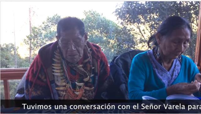 Taita Querubín, La Verdad sobre Ayahuasca Internacional