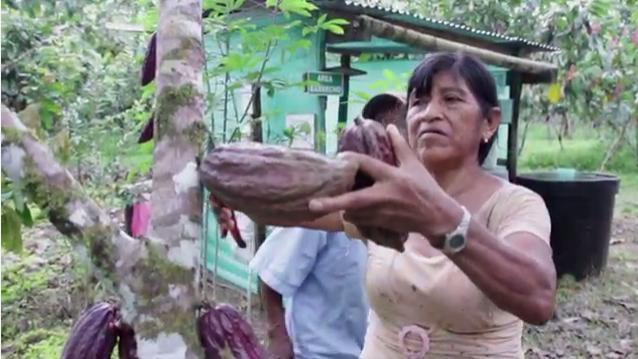 Ecopetrol en el Putumayo – 36 años de compromiso institucional